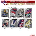 Hot Selling Knitting Scarf Factory Price Warm Scarf Promotional Gift Freight Forwarder (C1004)